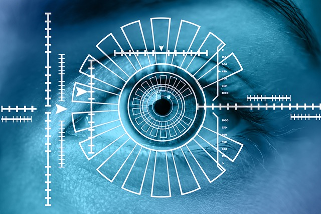 Eingrenzung des Auges