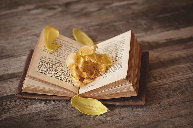 Buch mit Blume bedeckt